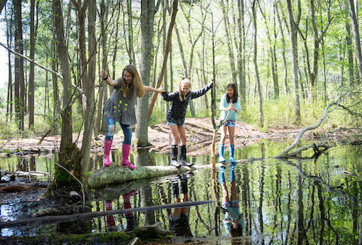 Three girls laugh as they cross a pond on a tree trunk while holding hands.